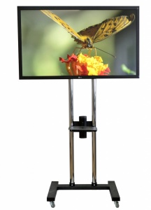 rent the lcd monitor 55 inch
